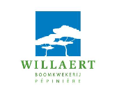 Logo Willaert